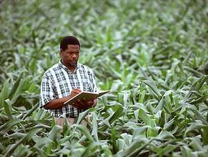 Agriculture (SSCE)